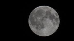 Permanent Moon