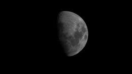 Moon Bishop