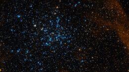 Messier 38 Starfish Cluster