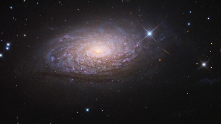 Messier 63 Sunflower Galaxy